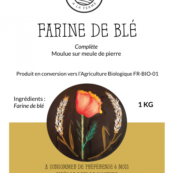 farine-ble-complet